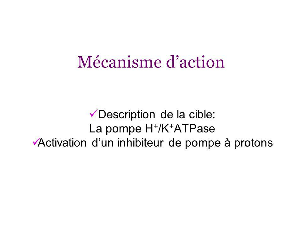 Mécanisme d'action Description de la cible: La pompe H+/K+ATPase