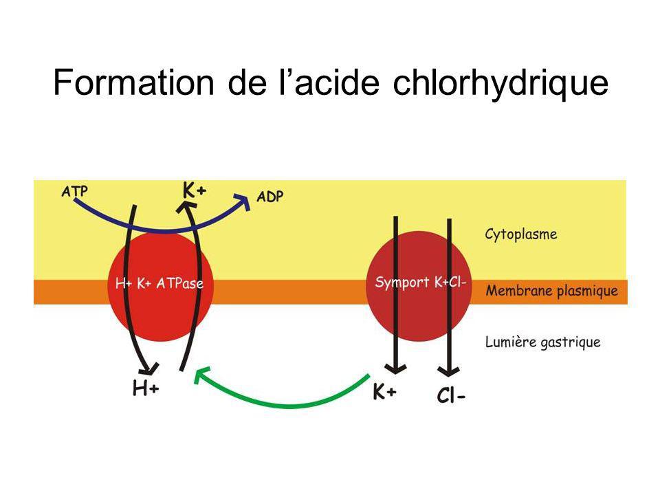 Formation de l'acide chlorhydrique