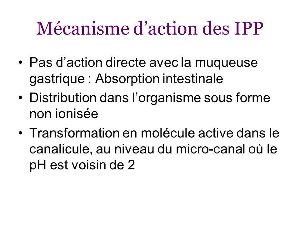 Mécanisme d'action des IPP