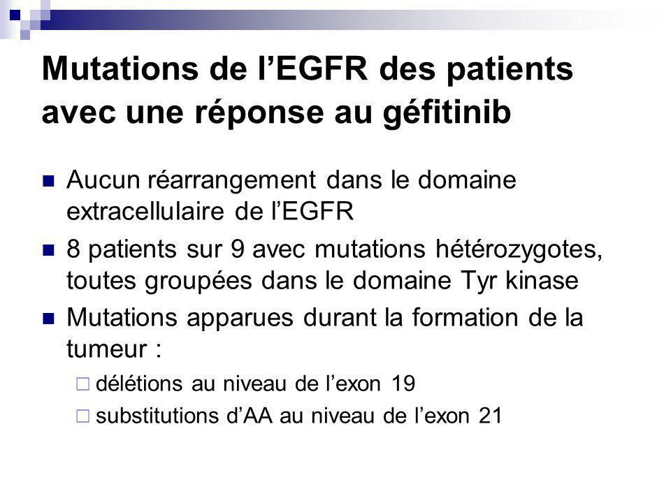 Mutations de l'EGFR des patients avec une réponse au géfitinib