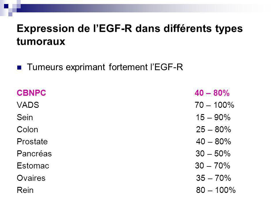 Expression de l'EGF-R dans différents types tumoraux