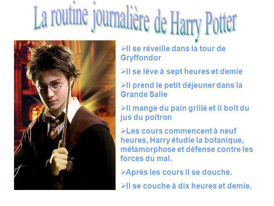 La routine journalière de Harry Potter