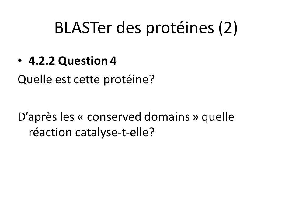 BLASTer des protéines (2)