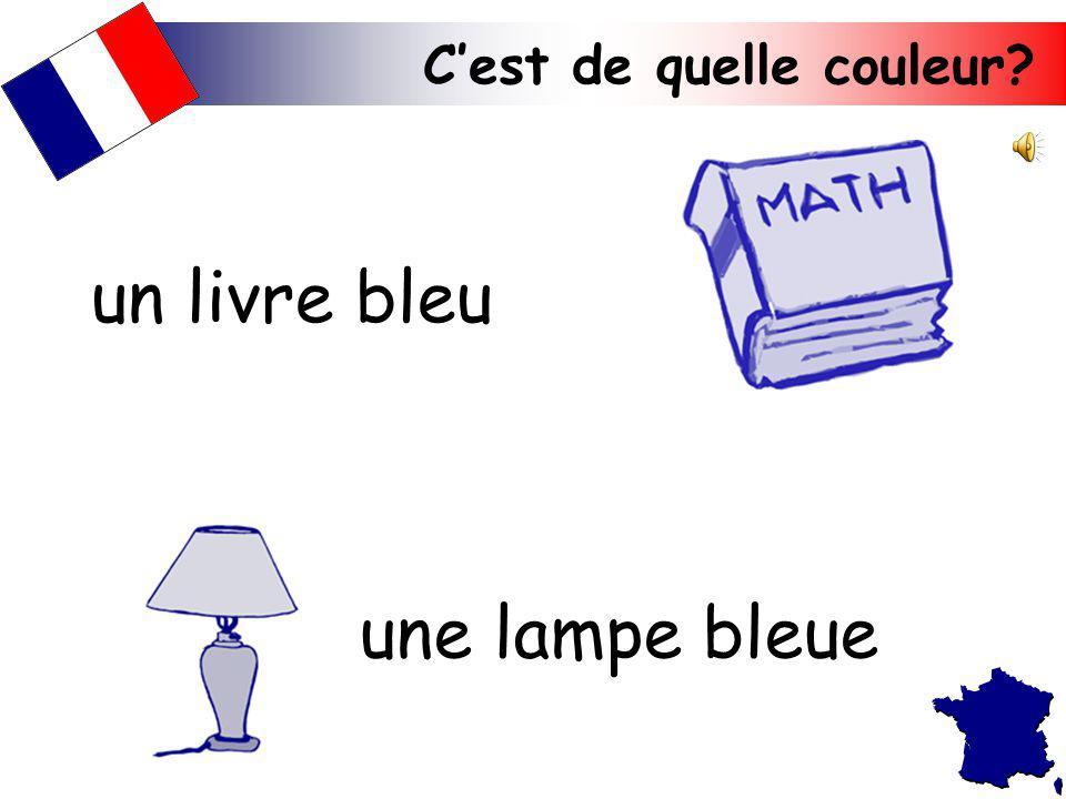 un livre bleu une lampe bleue C'est de quelle couleur