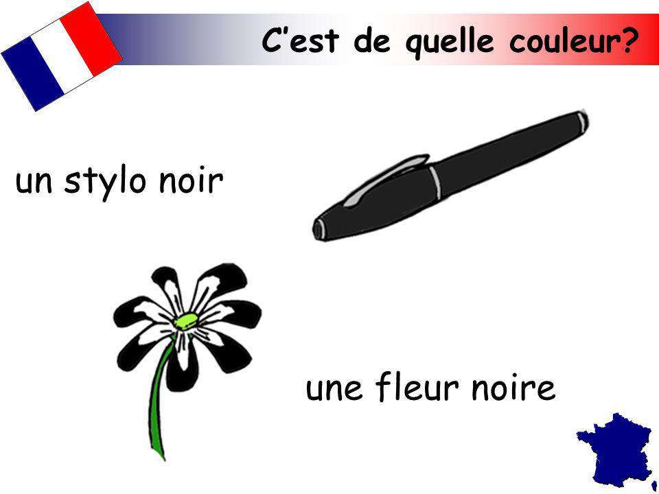 un stylo noir une fleur noire C'est de quelle couleur