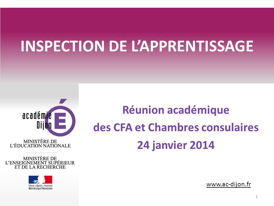 INSPECTION DE L'APPRENTISSAGE