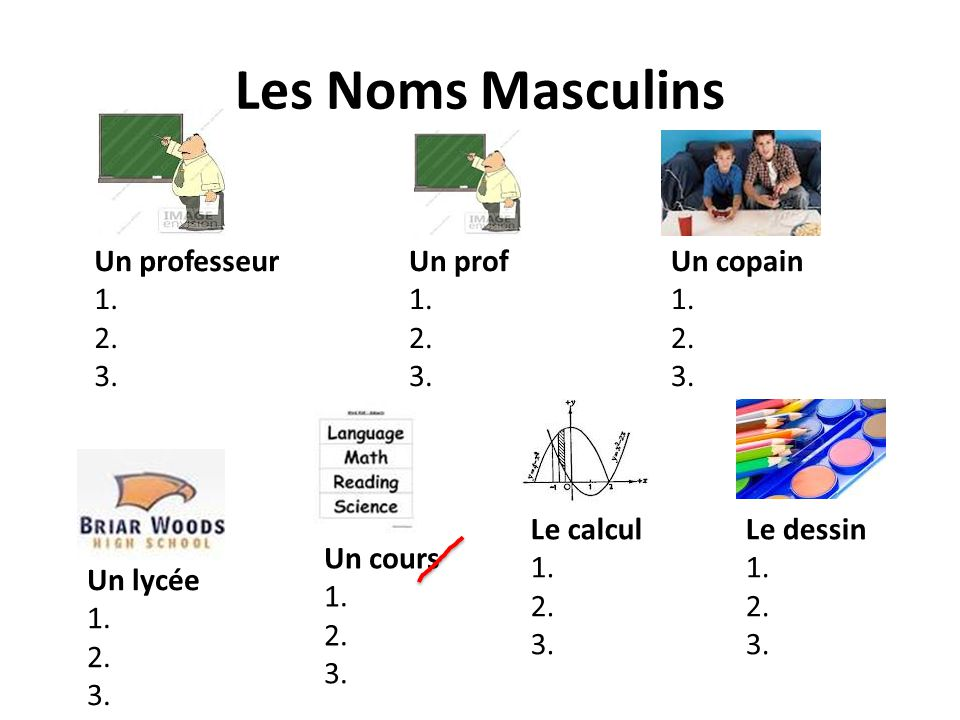 Les Noms Masculins Un professeur 1. 2. 3. Un prof 1. 2. 3. Un copain