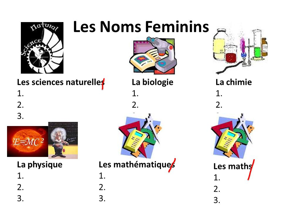 Les Noms Feminins Les sciences naturelles 1. 2. 3. La biologie 1. 2.