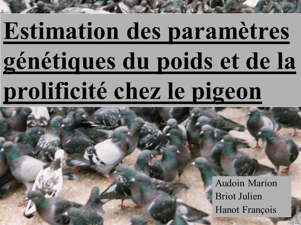 Audoin Marion Briot Julien Hanot François