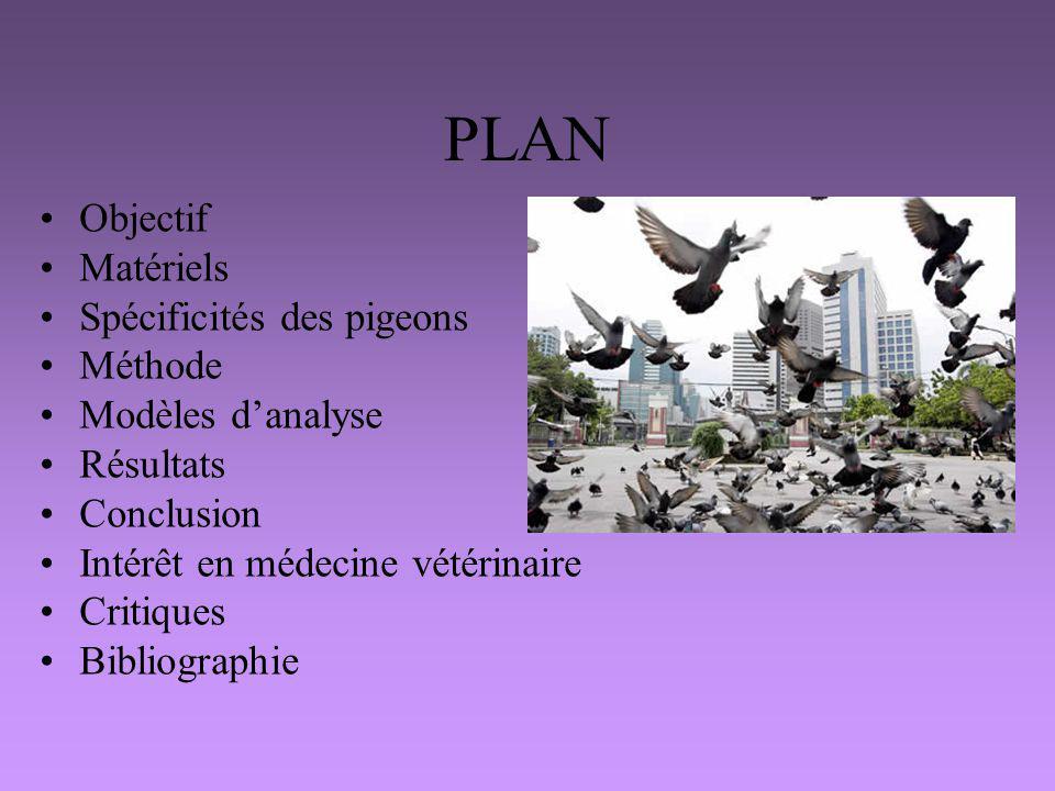 PLAN Objectif Matériels Spécificités des pigeons Méthode