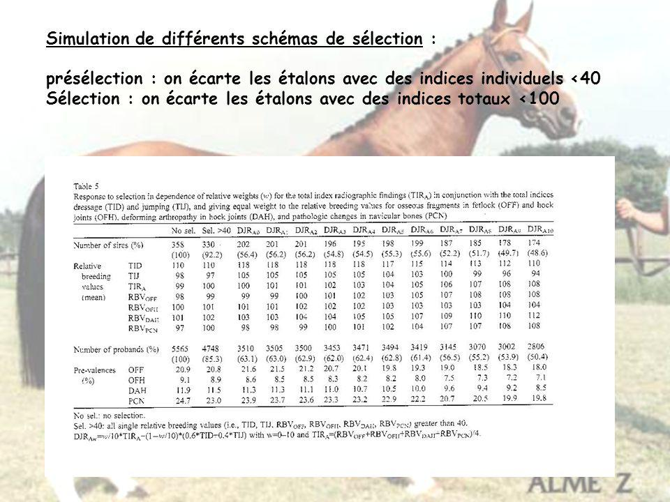 Simulation de différents schémas de sélection :