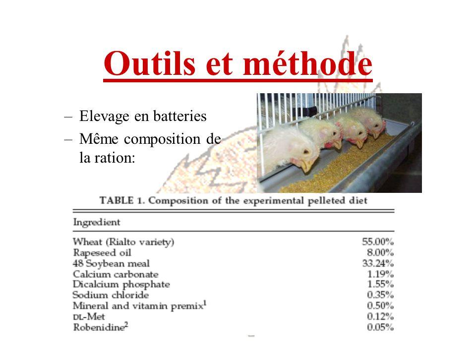 Outils et méthode Elevage en batteries Même composition de la ration: