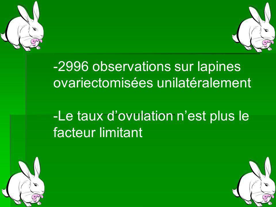 2996 observations sur lapines
