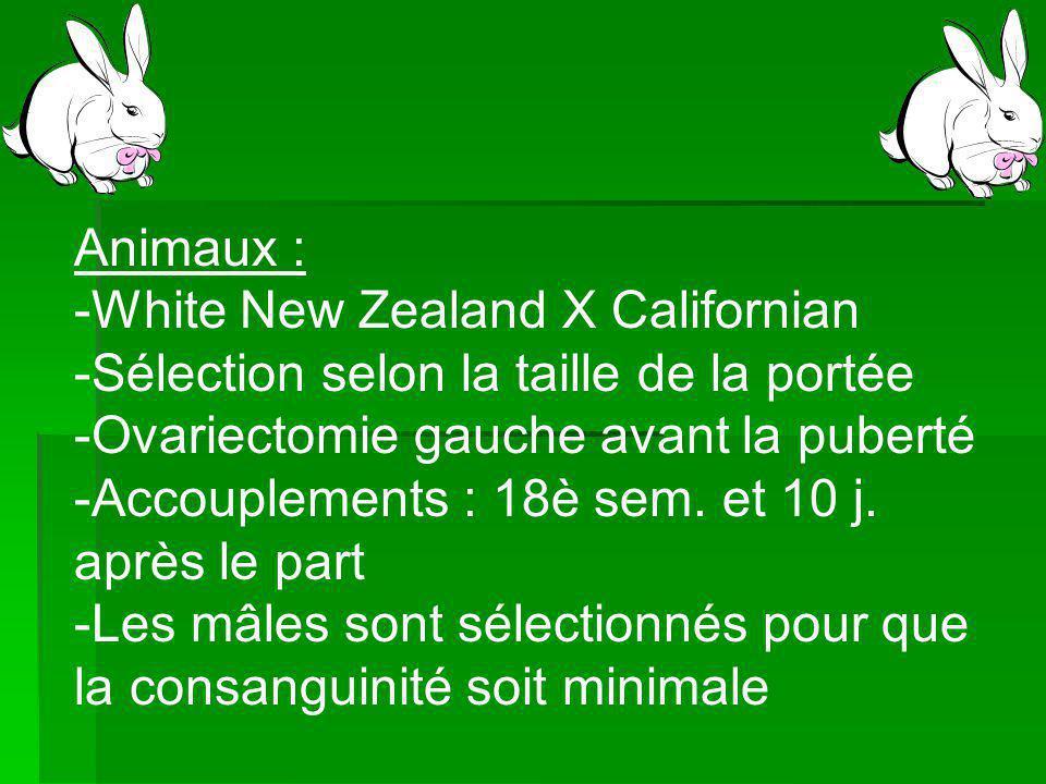 Animaux : White New Zealand X Californian. Sélection selon la taille de la portée. Ovariectomie gauche avant la puberté.