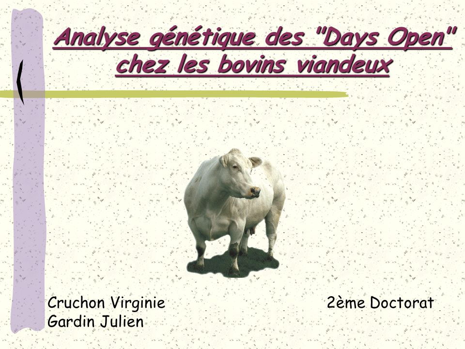 Analyse génétique des Days Open chez les bovins viandeux