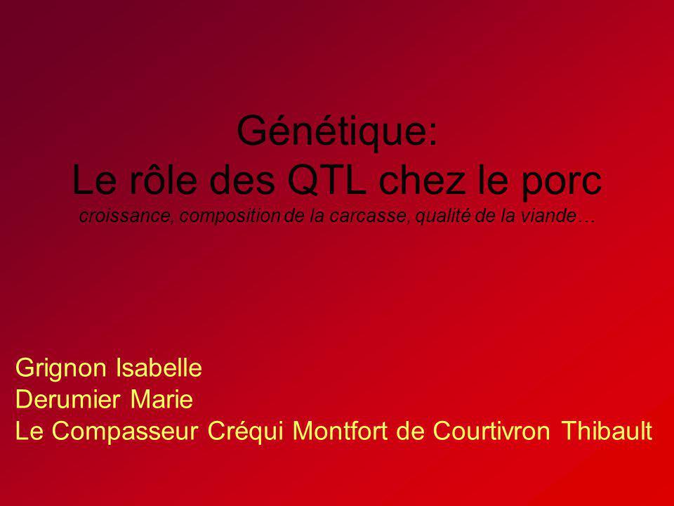 Génétique: Le rôle des QTL chez le porc croissance, composition de la carcasse, qualité de la viande…