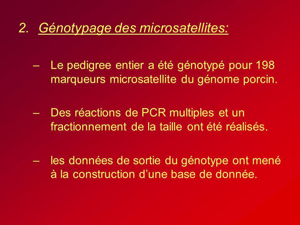 Génotypage des microsatellites:
