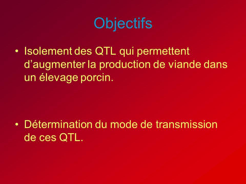 Objectifs Isolement des QTL qui permettent d'augmenter la production de viande dans un élevage porcin.