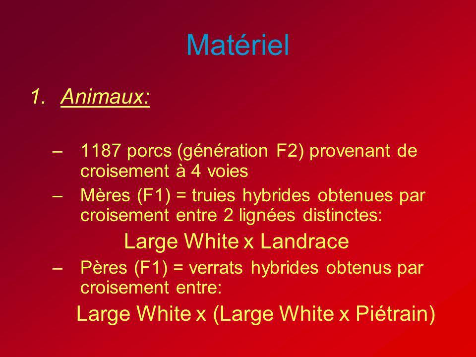 Matériel Animaux: Large White x Landrace