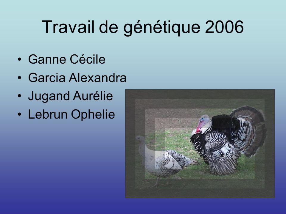 Travail de génétique 2006 Ganne Cécile Garcia Alexandra Jugand Aurélie