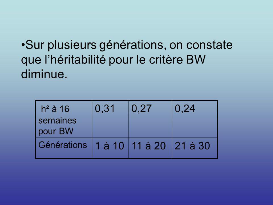 Sur plusieurs générations, on constate que l'héritabilité pour le critère BW diminue.