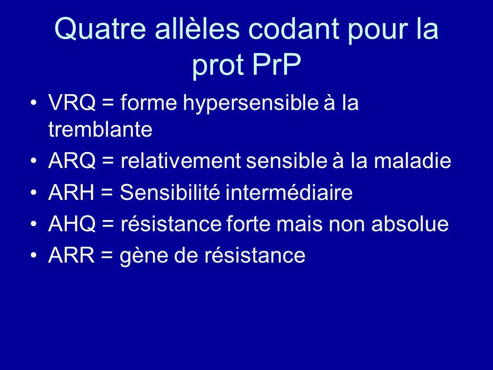 Quatre allèles codant pour la prot PrP