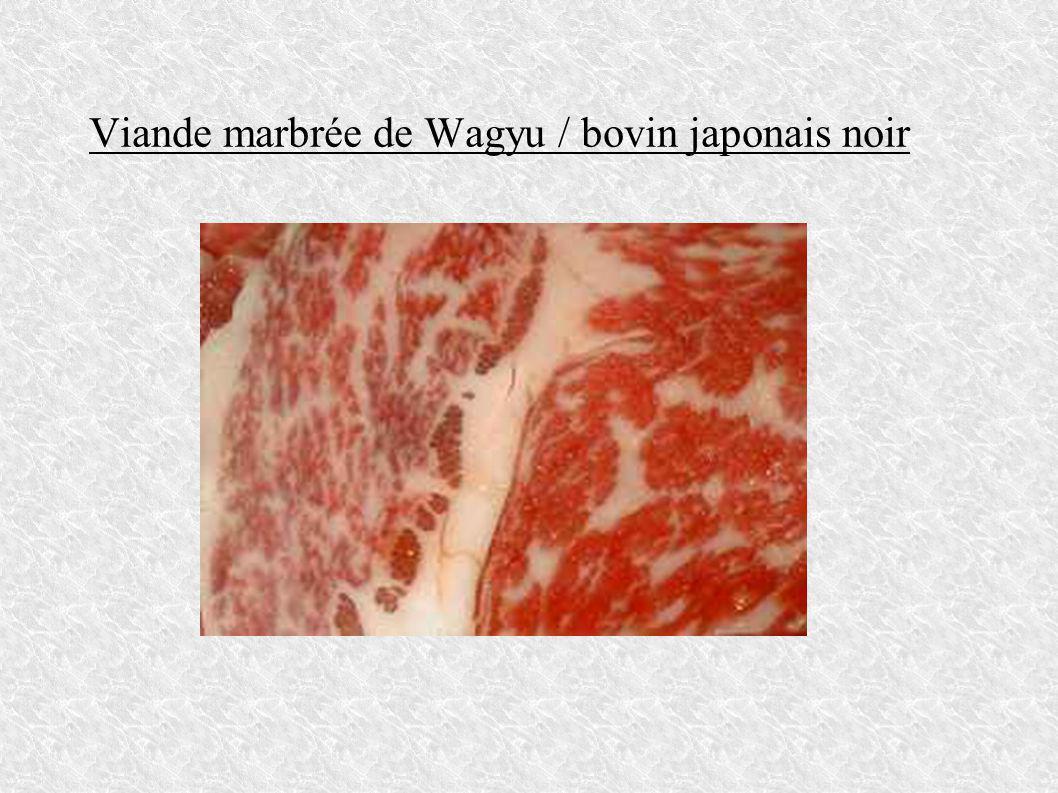 Viande marbrée de Wagyu / bovin japonais noir