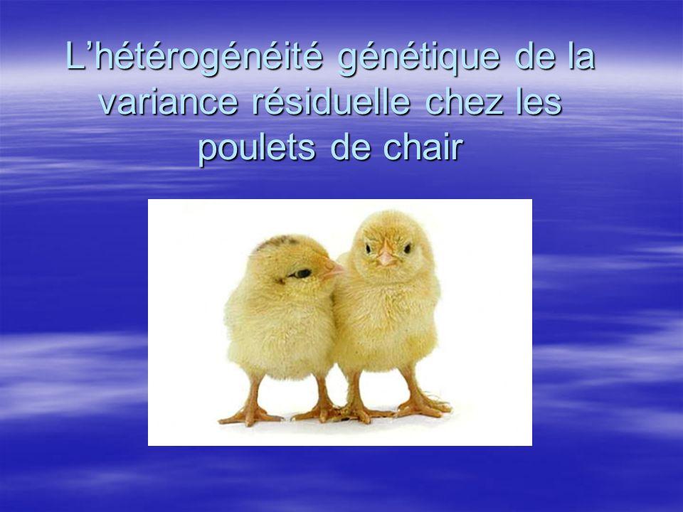 L'hétérogénéité génétique de la variance résiduelle chez les poulets de chair