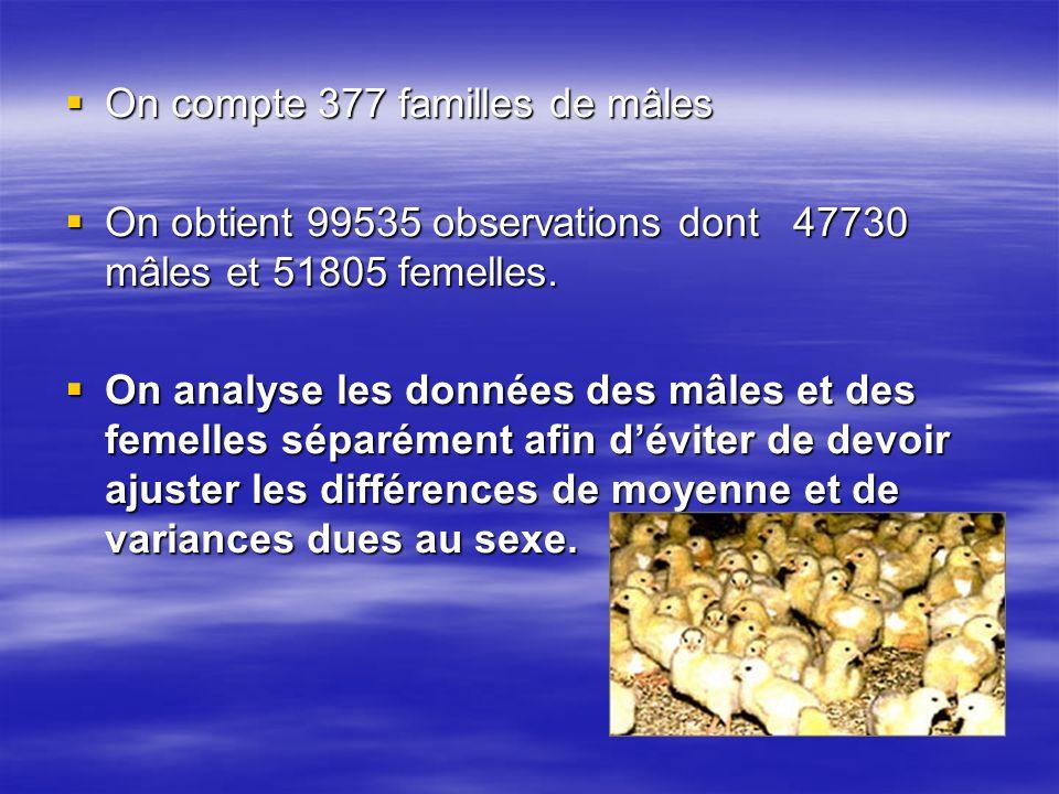 On compte 377 familles de mâles