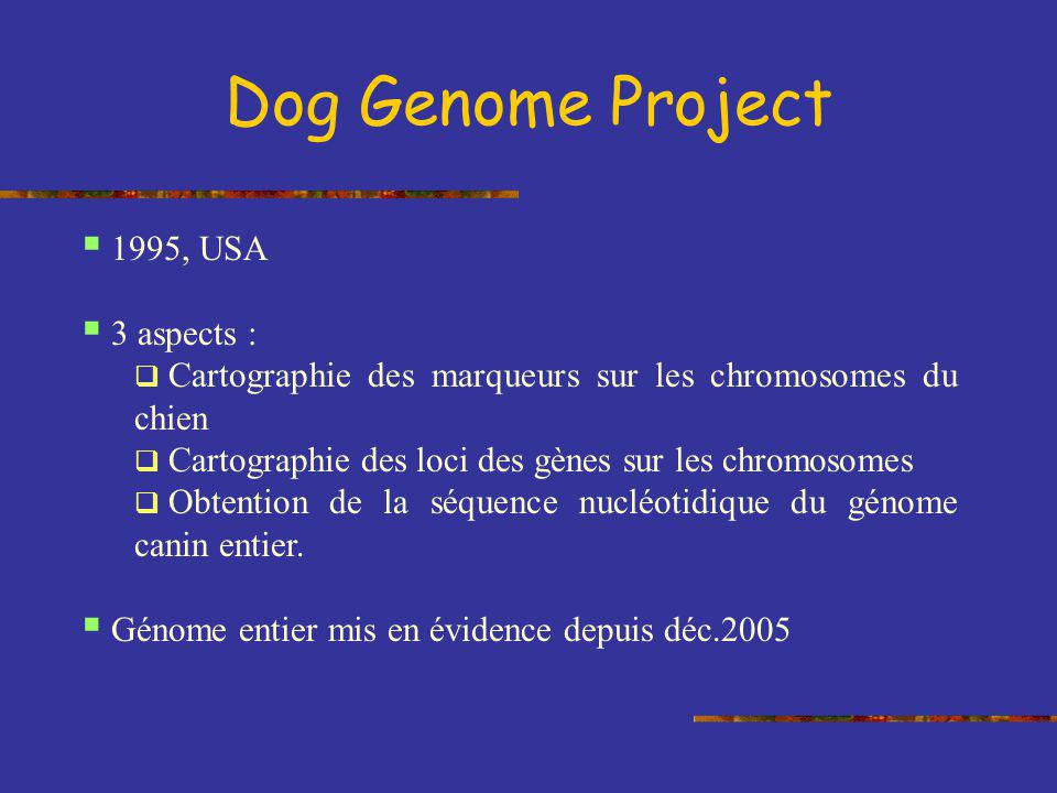 Dog Genome Project 1995, USA 3 aspects :