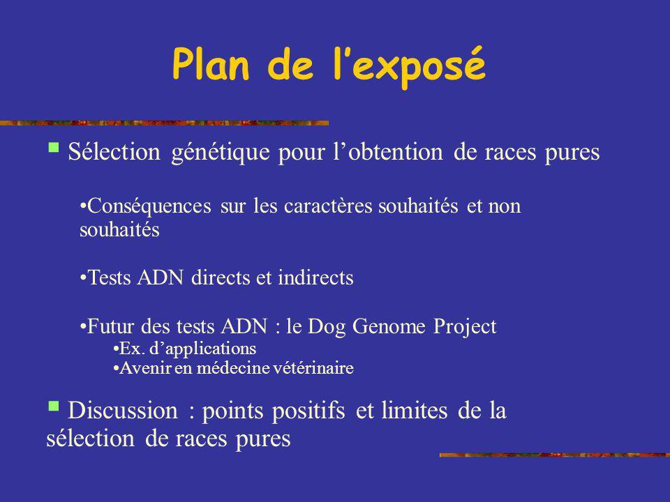 Plan de l'exposé Sélection génétique pour l'obtention de races pures