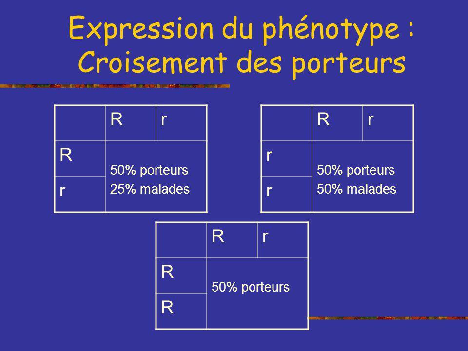 Expression du phénotype : Croisement des porteurs