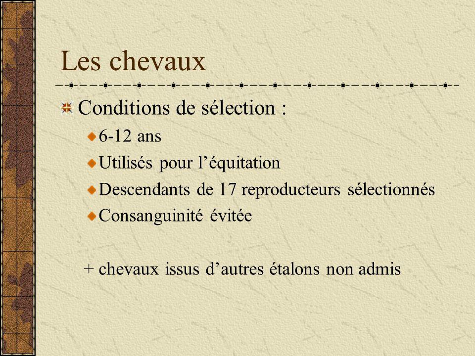 Les chevaux Conditions de sélection : 6-12 ans