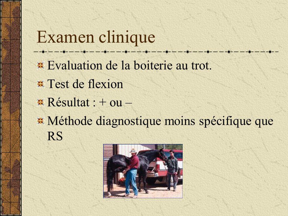 Examen clinique Evaluation de la boiterie au trot. Test de flexion