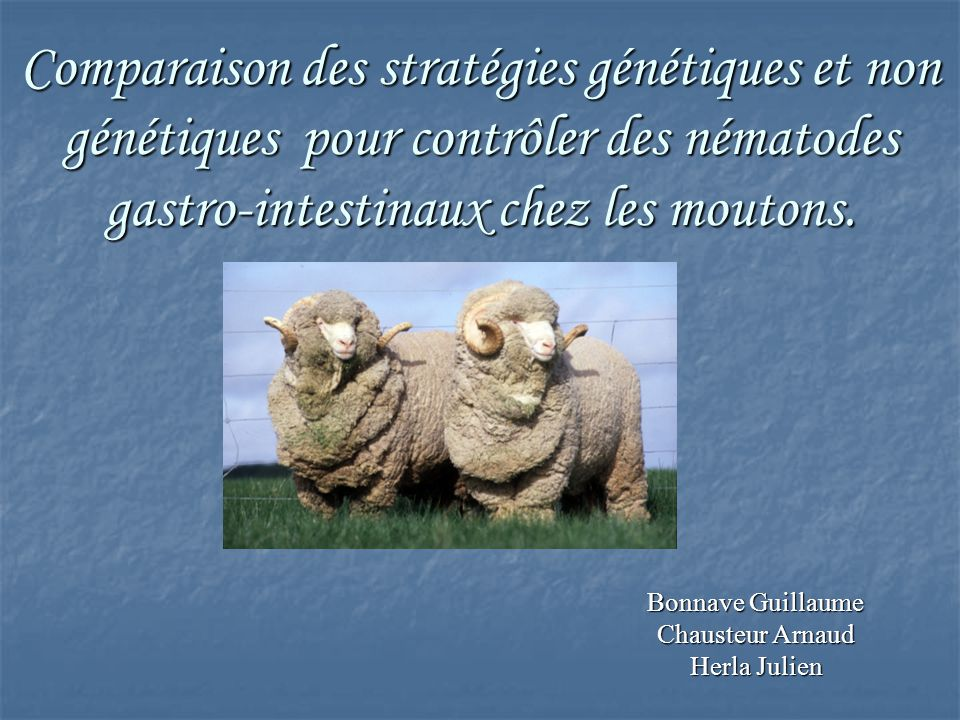 Bonnave Guillaume Chausteur Arnaud Herla Julien