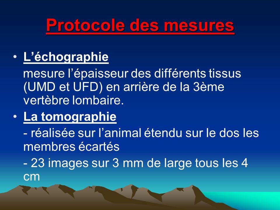 Protocole des mesures L'échographie