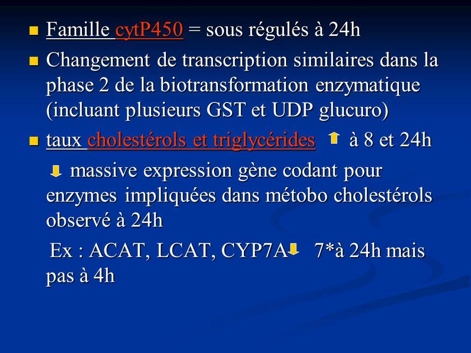 Famille cytP450 = sous régulés à 24h