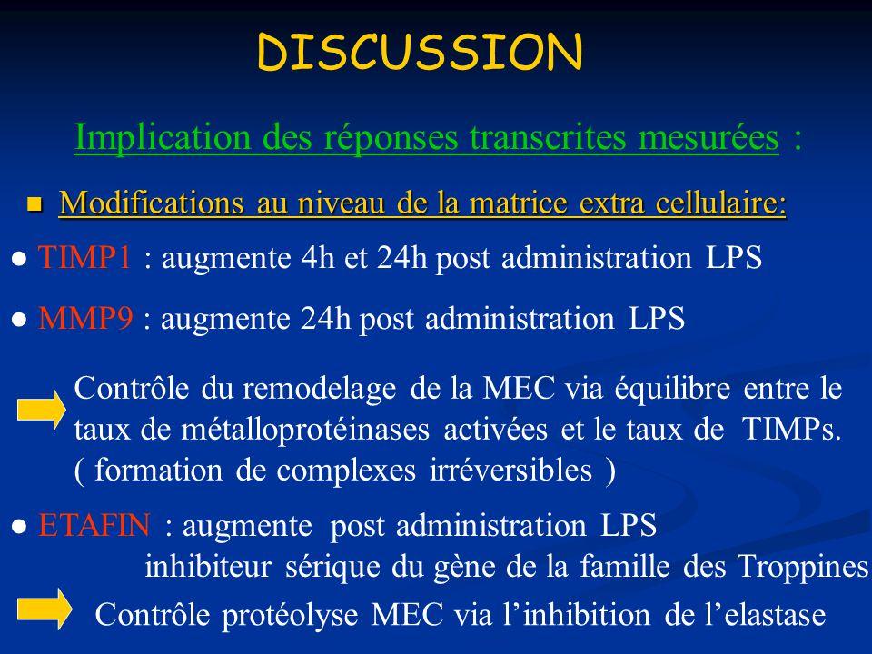 DISCUSSION Implication des réponses transcrites mesurées :