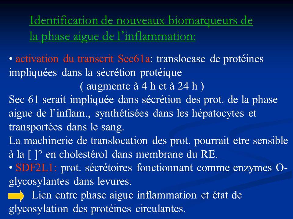 Identification de nouveaux biomarqueurs de la phase aigue de l'inflammation: