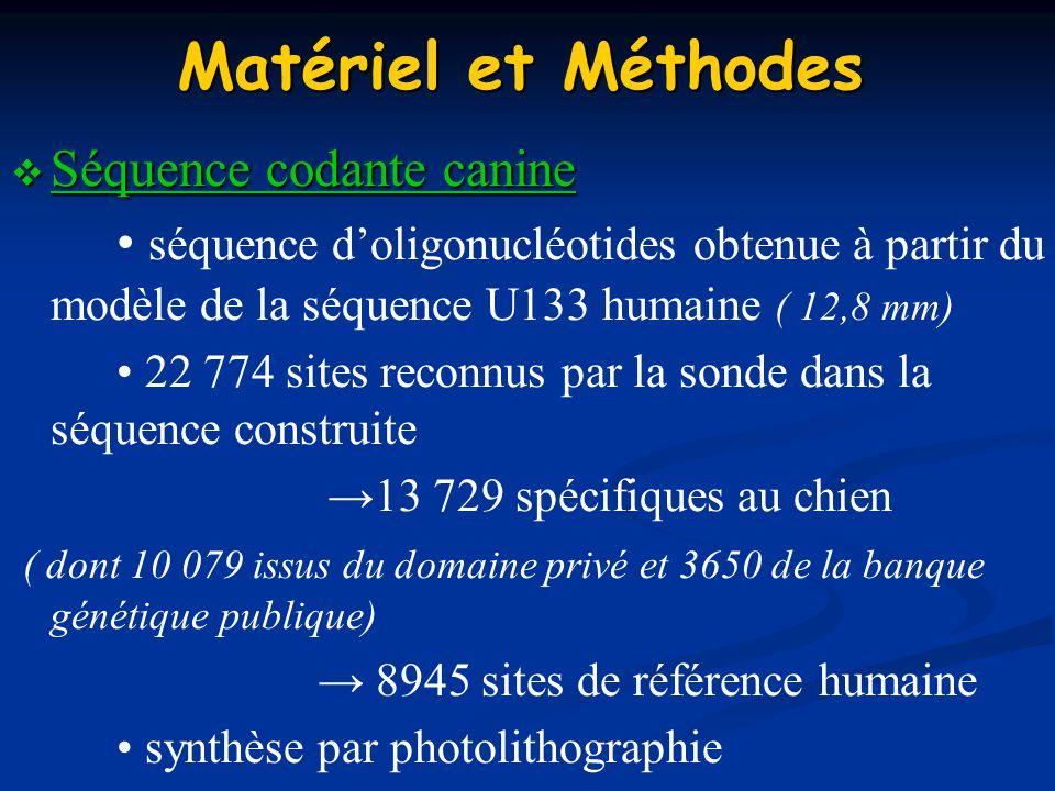 Matériel et Méthodes Séquence codante canine