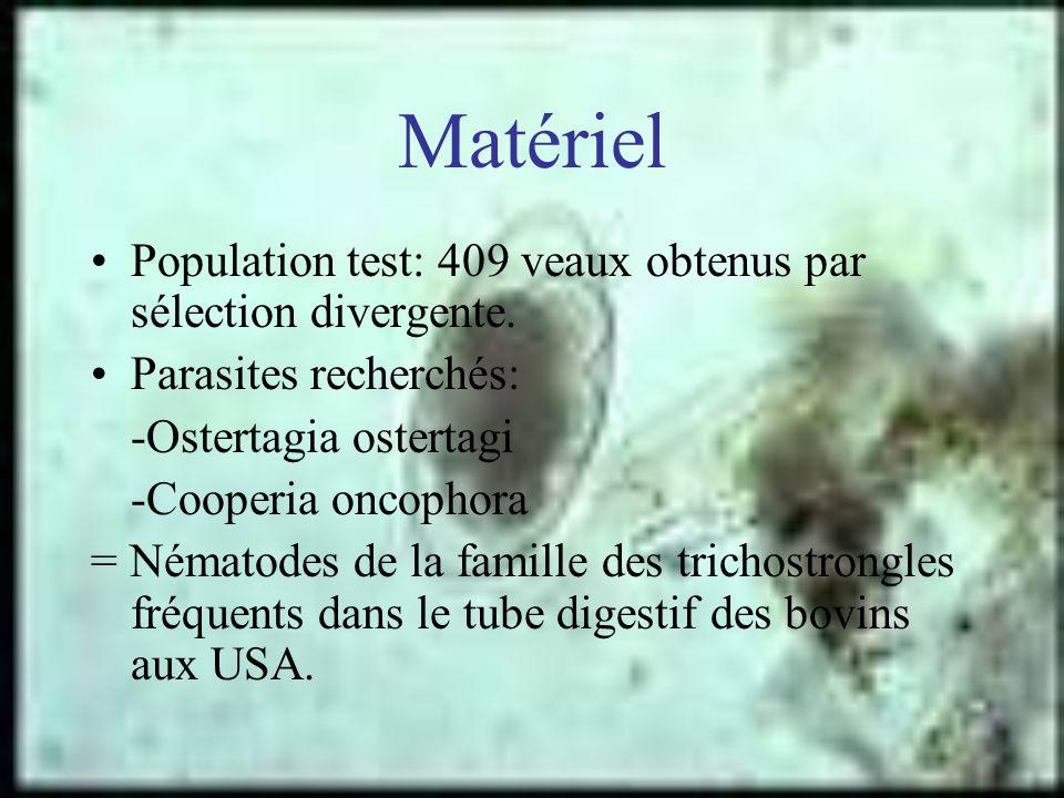 Matériel Population test: 409 veaux obtenus par sélection divergente.