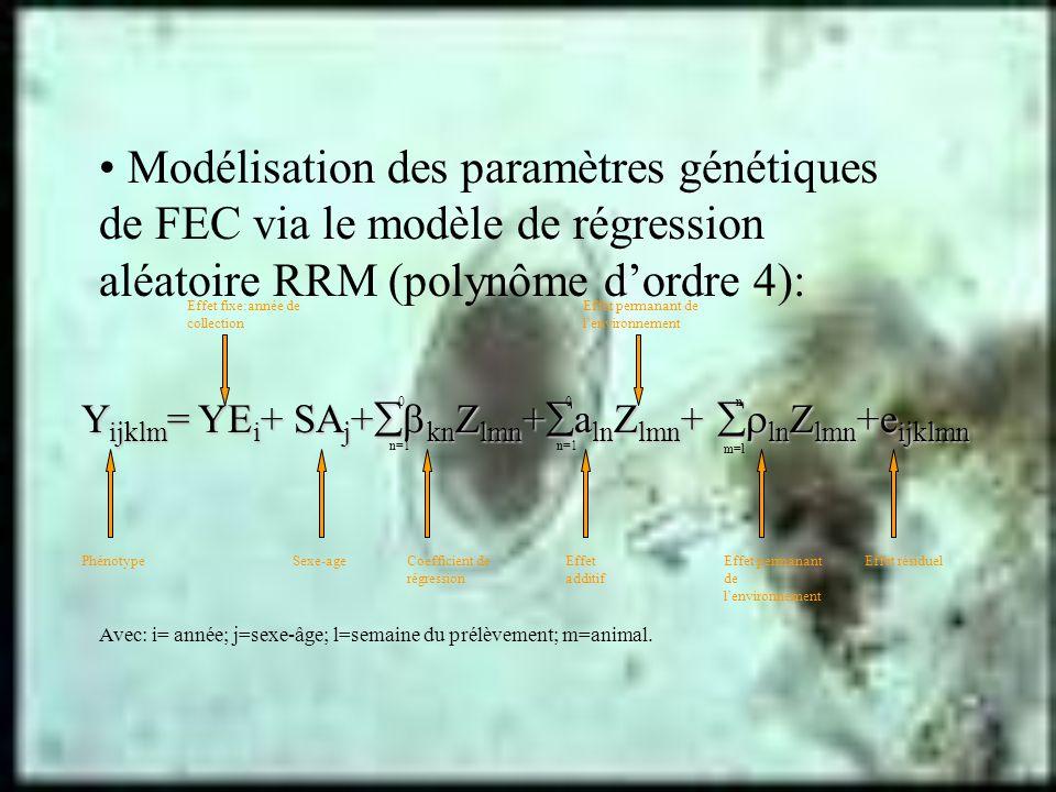 Modélisation des paramètres génétiques de FEC via le modèle de régression aléatoire RRM (polynôme d'ordre 4):