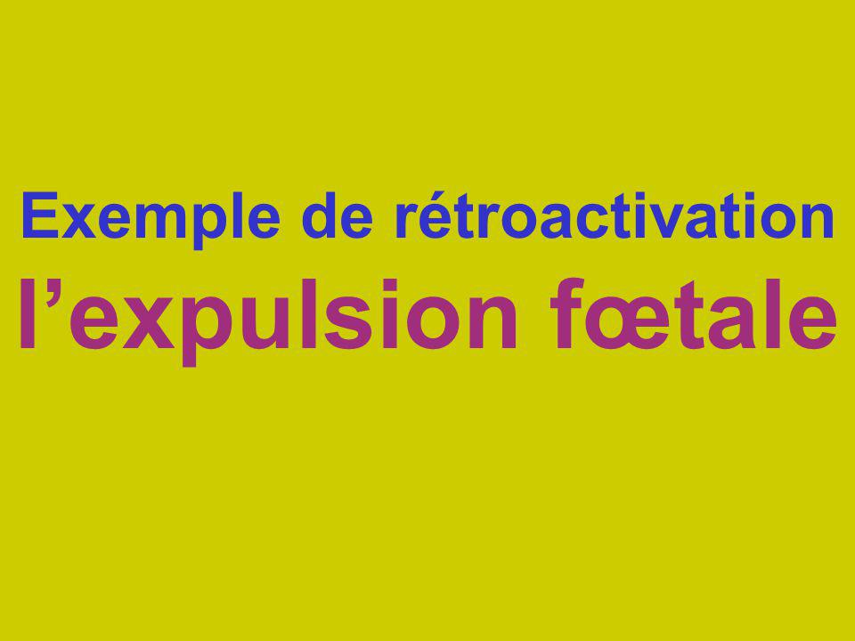 Exemple de rétroactivation l'expulsion fœtale