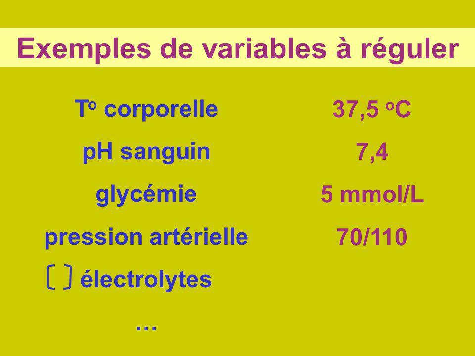 Exemples de variables à réguler