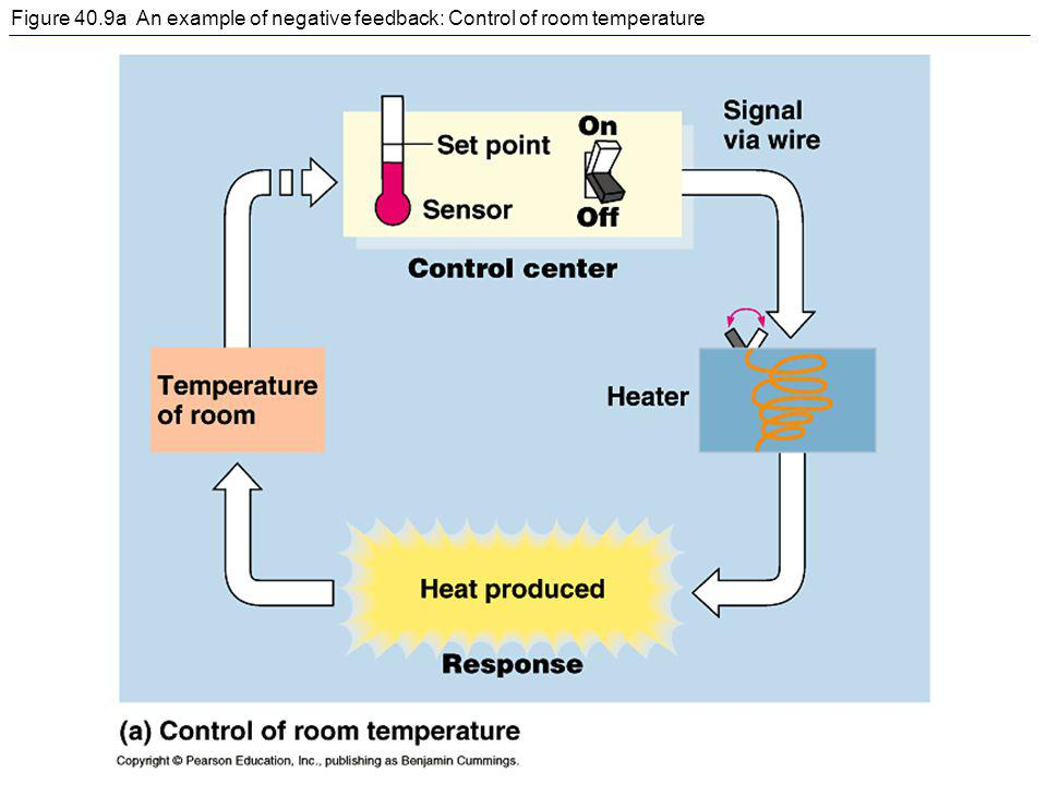 Figure 40.9a An example of negative feedback: Control of room temperature