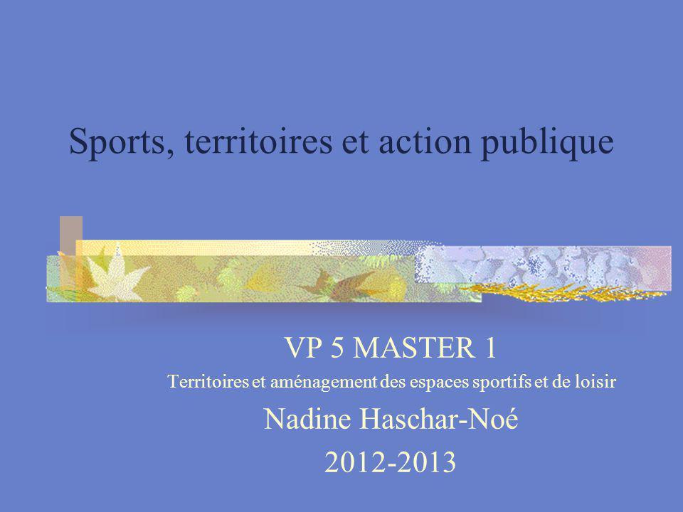 Sports, territoires et action publique