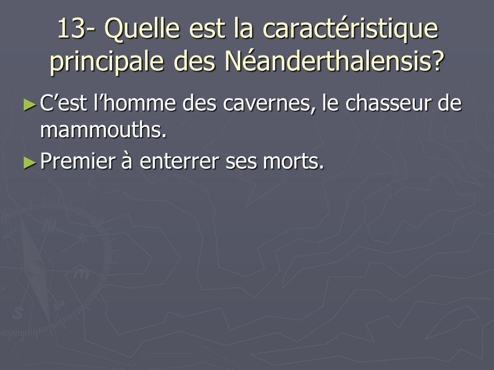 13- Quelle est la caractéristique principale des Néanderthalensis