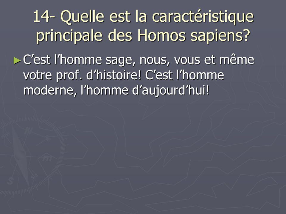 14- Quelle est la caractéristique principale des Homos sapiens