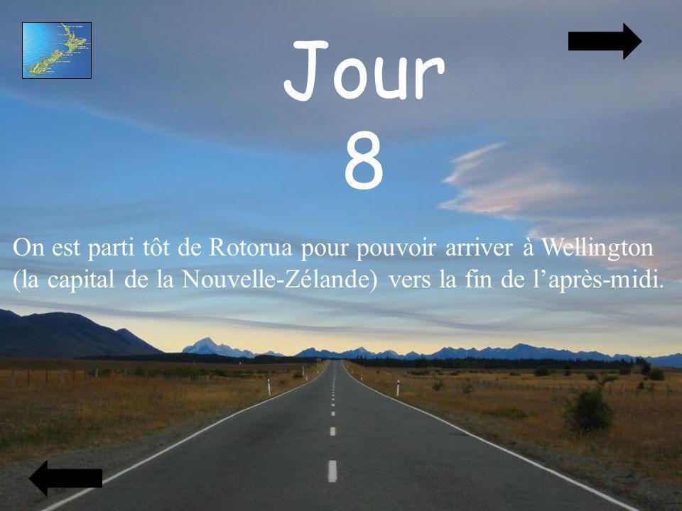 Jour 8 On est parti tôt de Rotorua pour pouvoir arriver à Wellington
