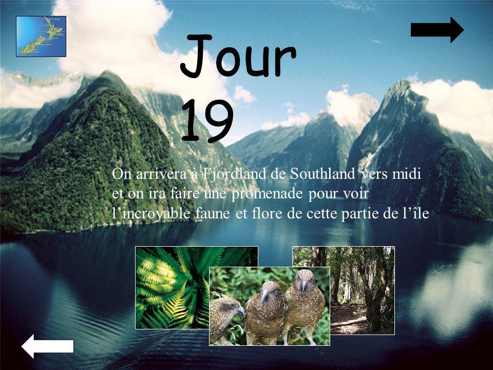 Jour 19 On arrivera à Fjordland de Southland vers midi